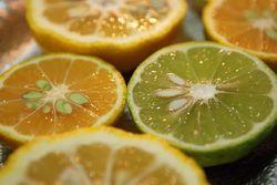 柚子柚香橙②