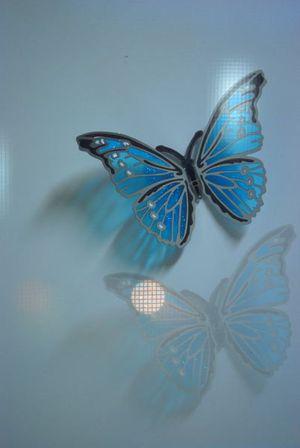Swallowtail ②