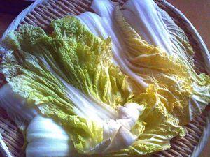 干し野菜 (3)