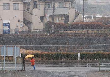 淡雪写真館 (2)