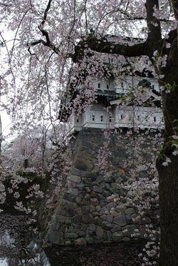 弘前2011 (14)