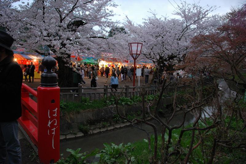 弘前2011 (5)