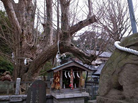海南神社ー3
