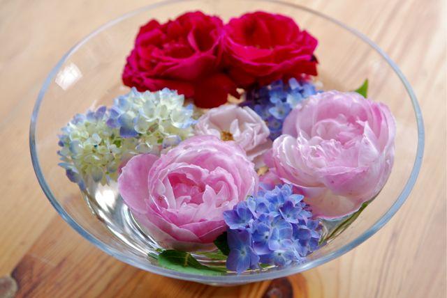 5月の薔薇-2