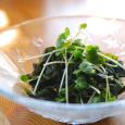 ワカメとカイワレの青紫蘇ドレッシングサラダ