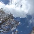 3月11日の空