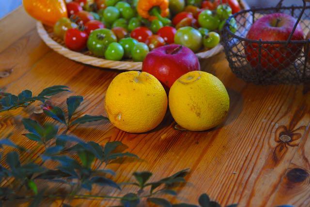 柑橘類の名前