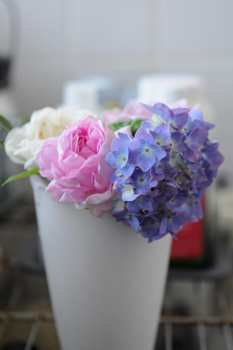 紫陽花とヘルシューレン