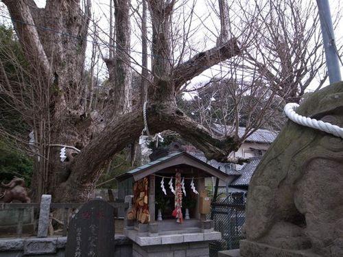 海南神社-3