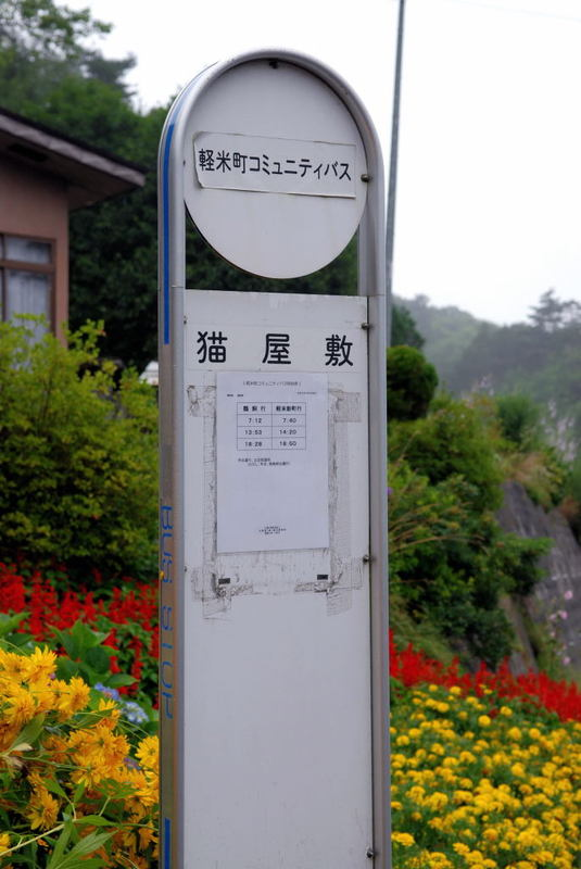 20070534